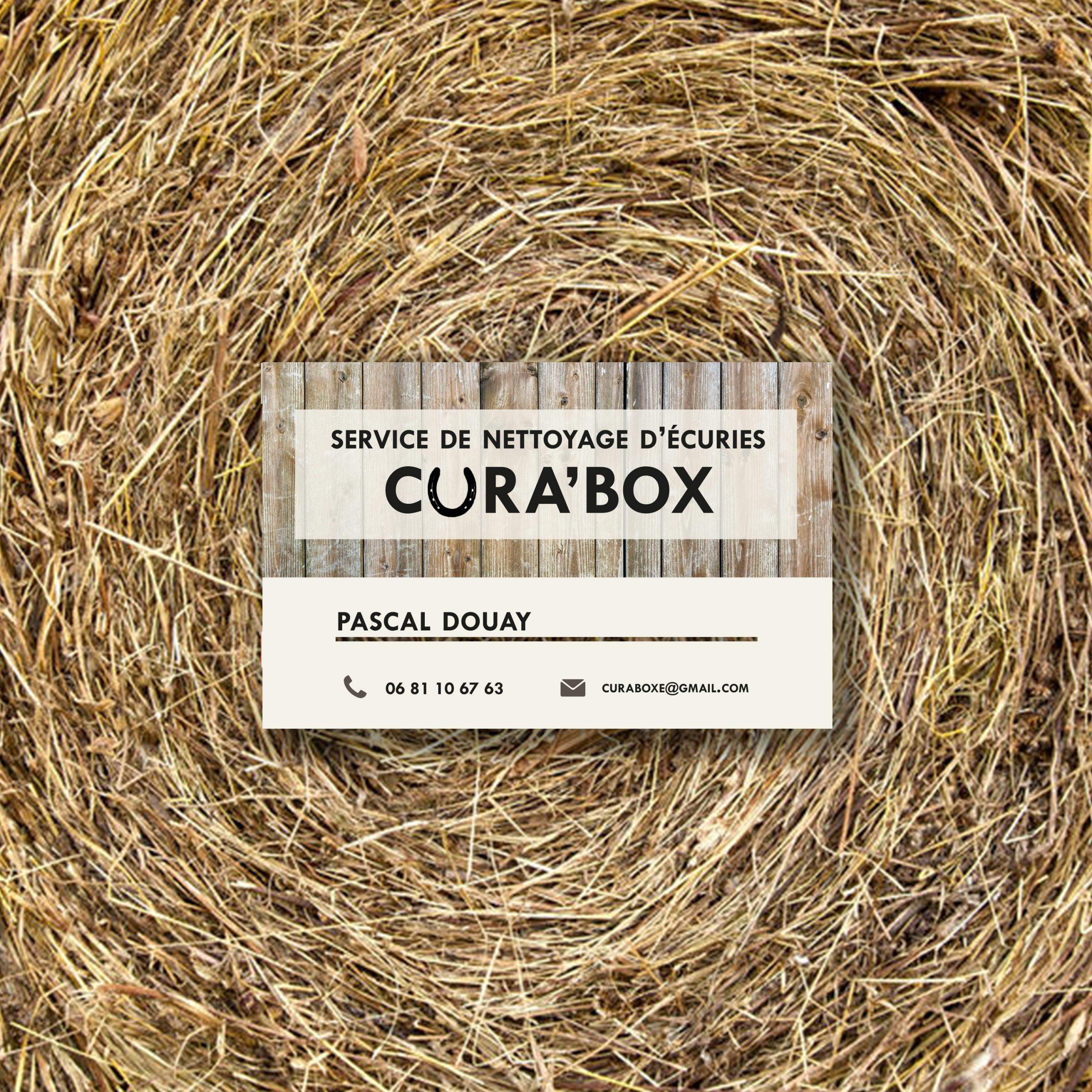 logo cura box